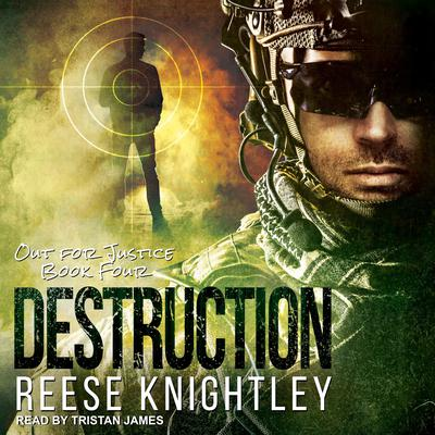 Destruction Audiobook, by Reese Knightley