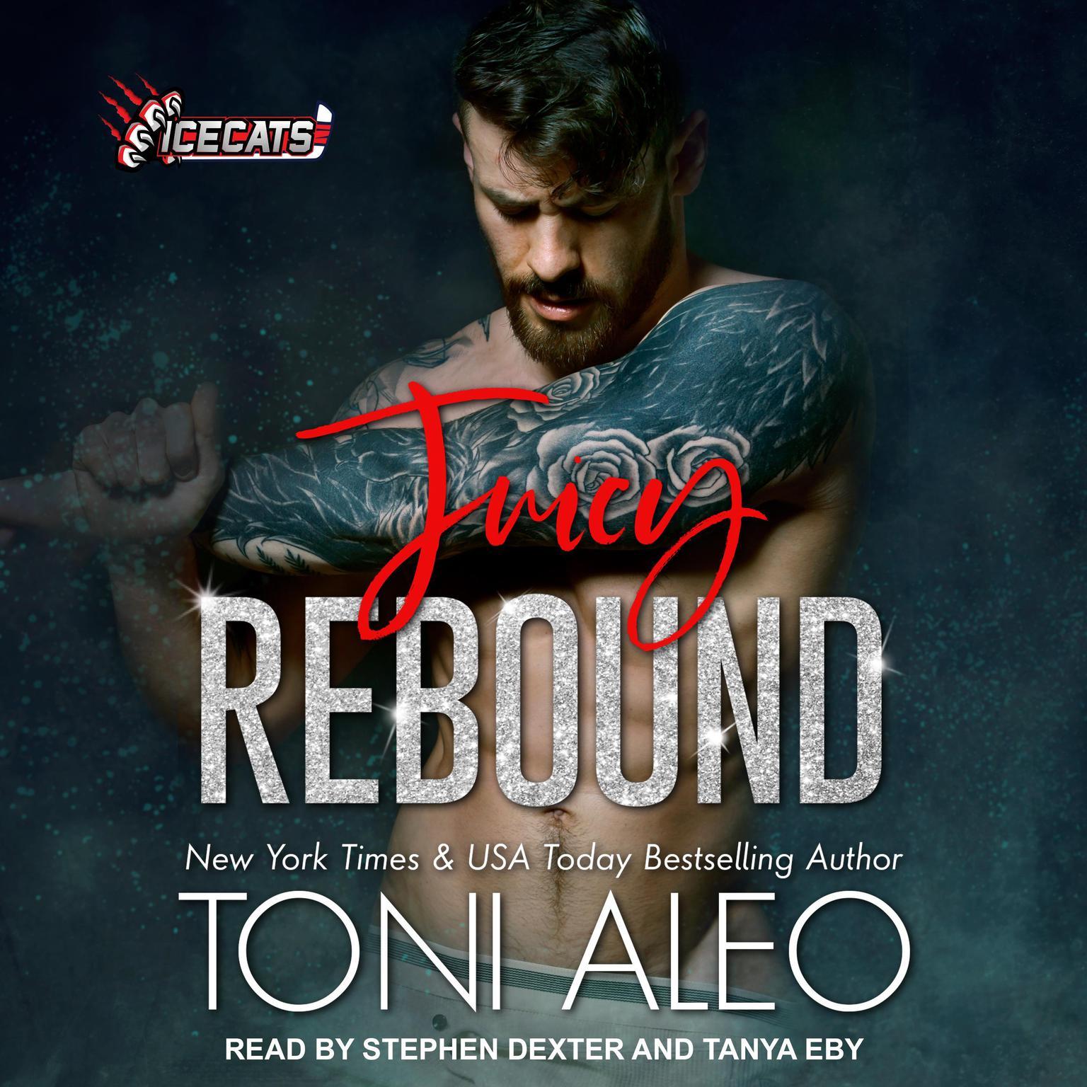 Printable Juicy Rebound Audiobook Cover Art