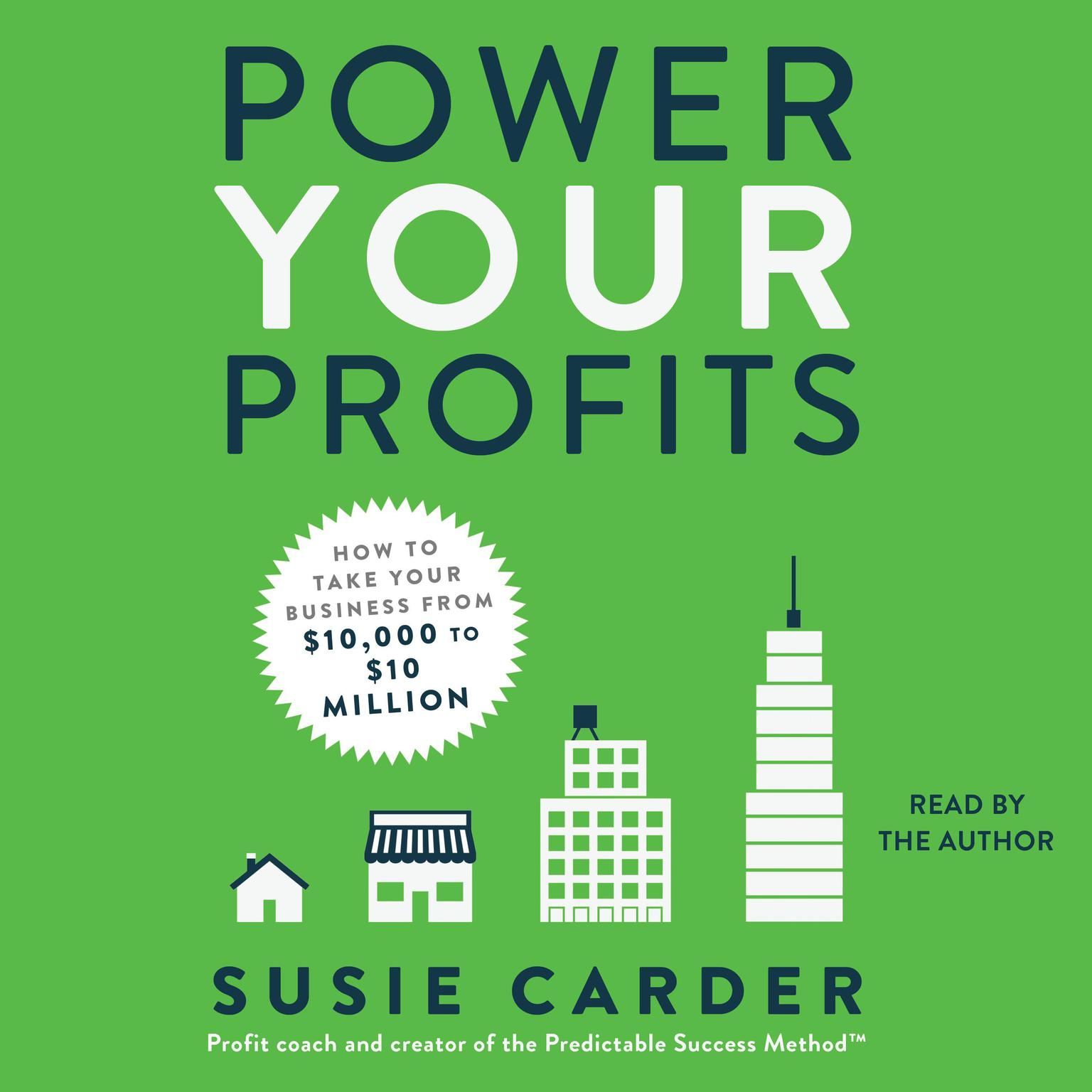 Printable Power Your Profits: How to Take Your Business from $10,000 to $10,000,000 Audiobook Cover Art