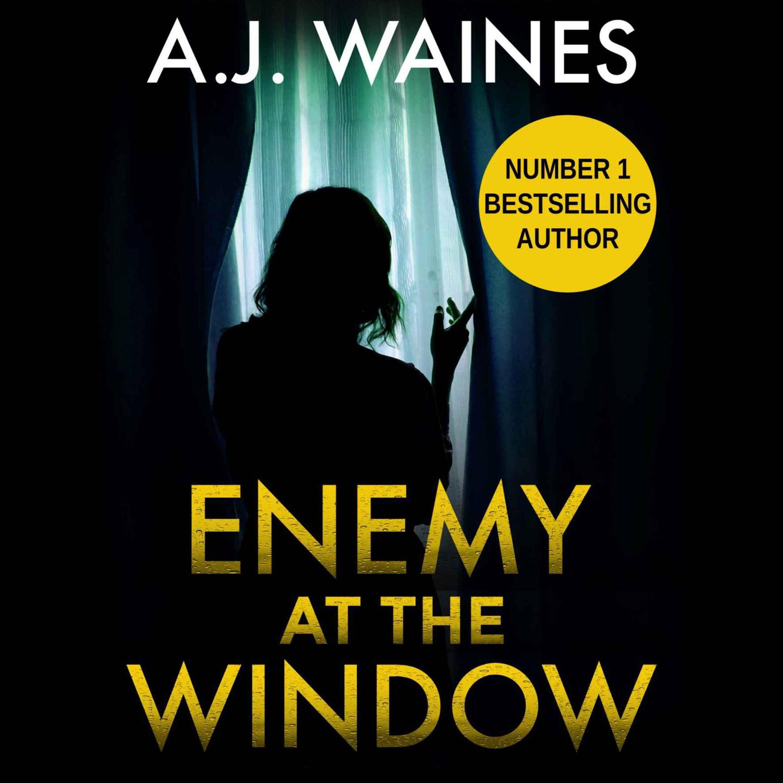 Printable Enemy at the Window Audiobook Cover Art
