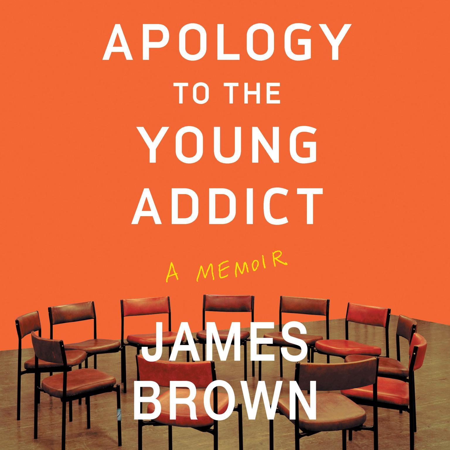 Printable Apology to the Young Addict: A Memoir Audiobook Cover Art