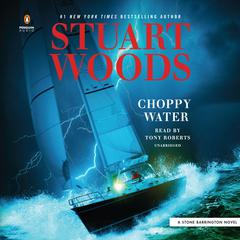 Choppy Water Audiobook, by Stuart Woods