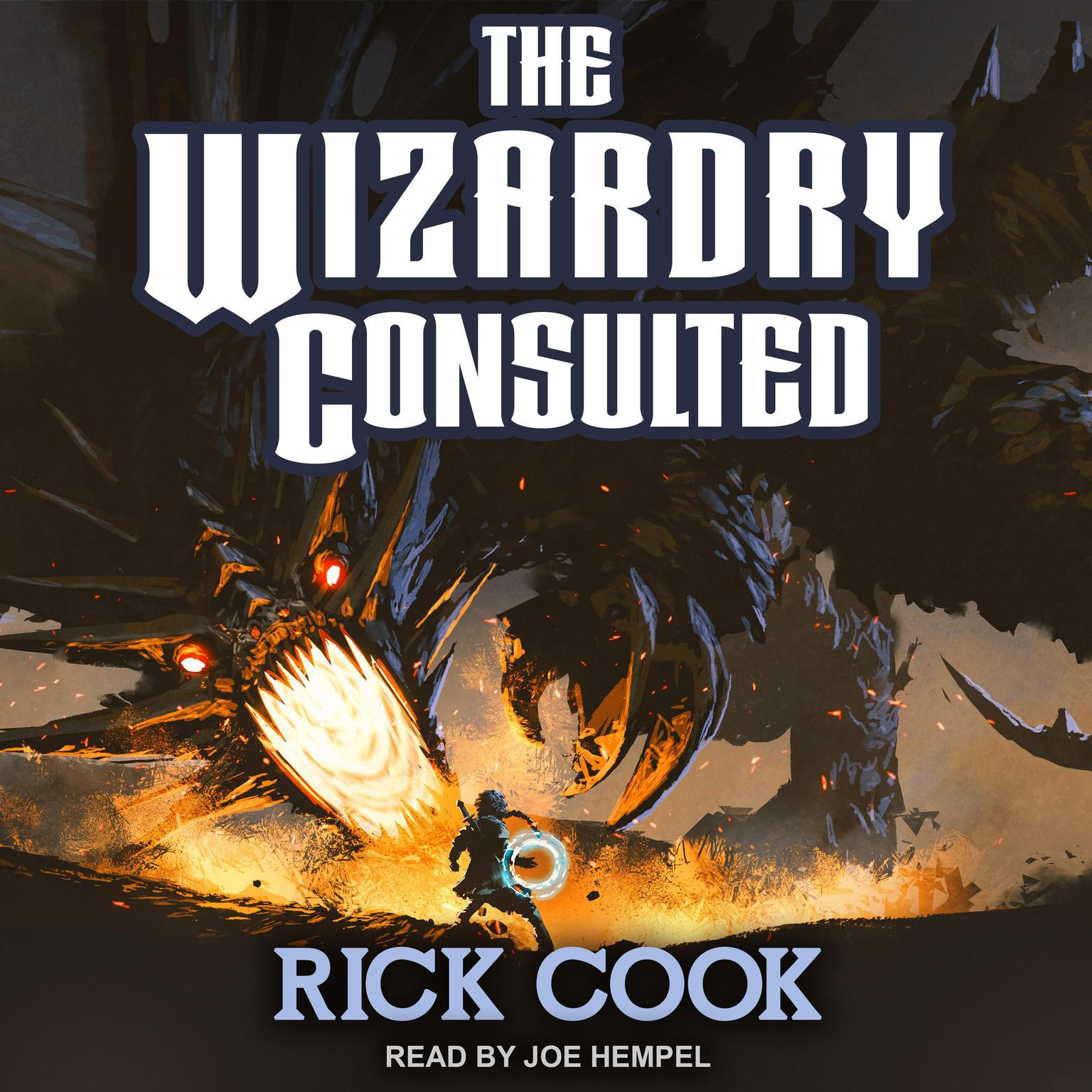 The Wizardry Consulted Audiobook, by Rick Cook