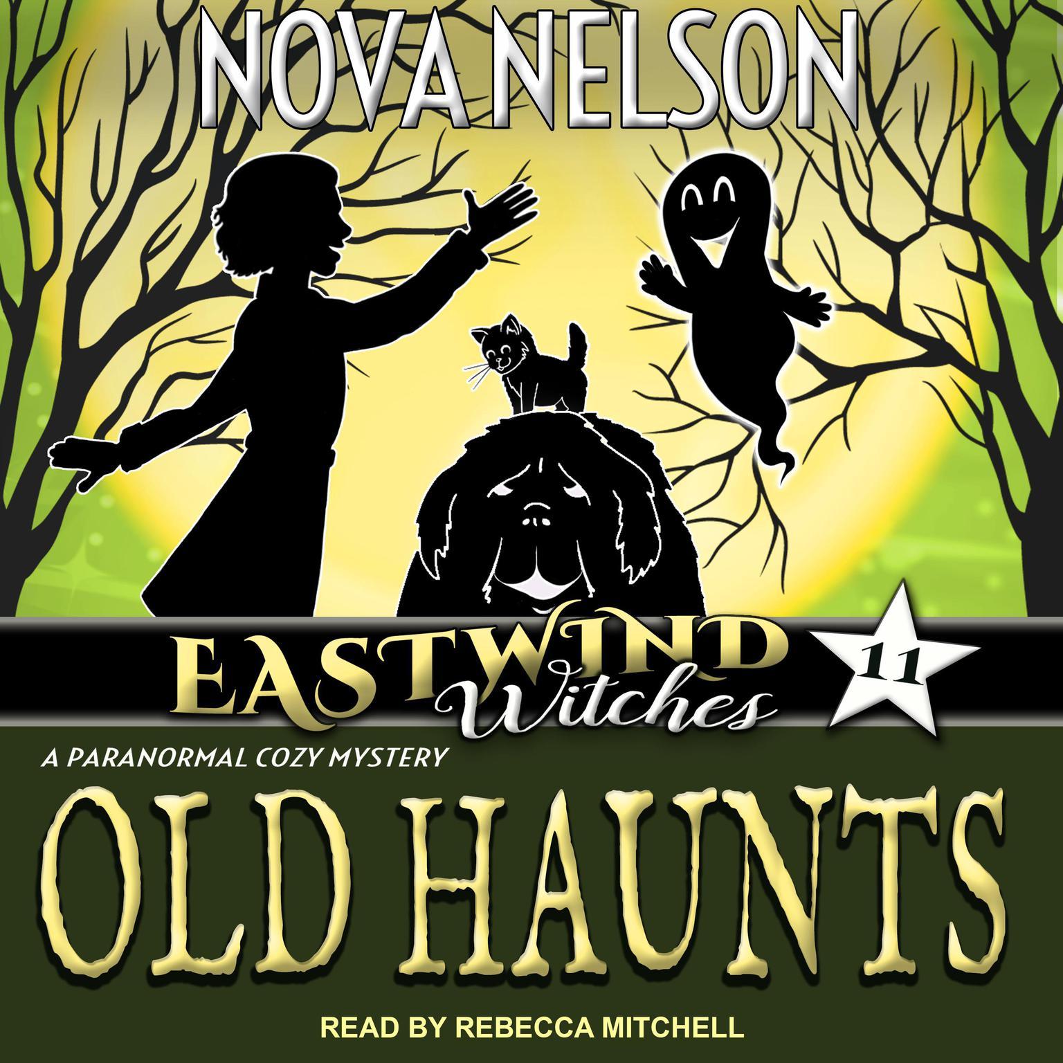 Old Haunts Audiobook, by Nova Nelson