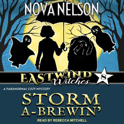 Storm a-Brewin' Audiobook, by