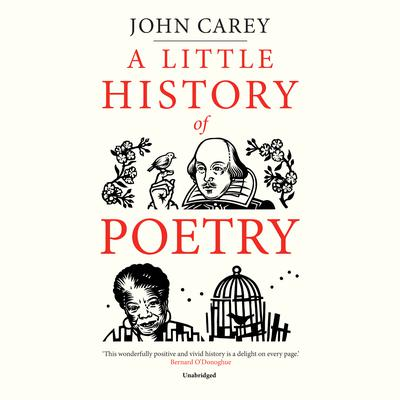 A Little History of Poetry Audiobook, by