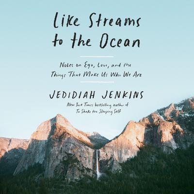 Like Streams to the Ocean: Notes on Ego, Love, and the Things That Make Us Who We Are Audiobook, by