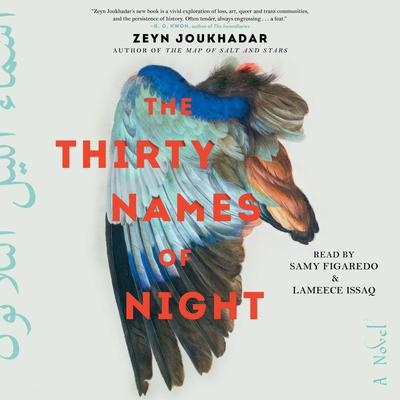 The Thirty Names of Night: A Novel Audiobook, by Zeyn Joukhadar