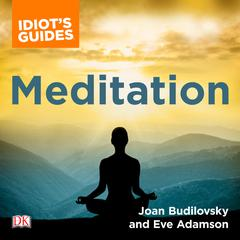 The Complete Idiots Guide to Meditation: How to Heal Through the Mind/Body Connection Audiobook, by Eve Adamson, Joan Budilovsky