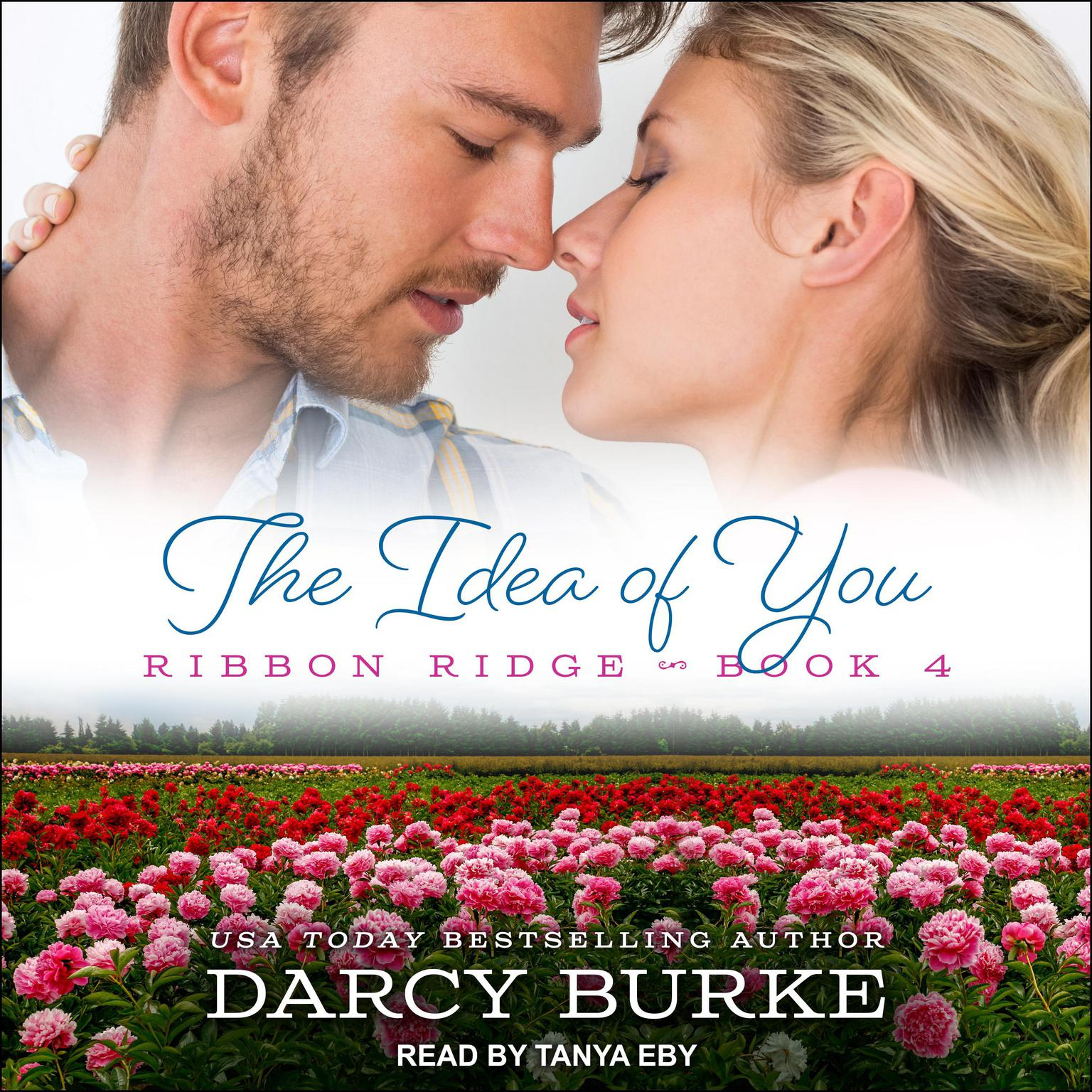 The Idea of You Audiobook, by Darcy Burke