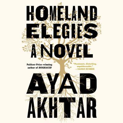 Homeland Elegies: A Novel Audiobook, by