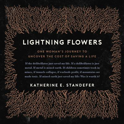 Lightning Flowers: My Journey to Uncover the Cost of Saving a Life Audiobook, by Katherine E. Standefer