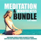 Meditation and Mindfulness Bundle: 12 in 1 Bundle