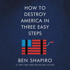 How to Destroy America in Three Easy Steps Audiobook, by