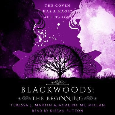 Blackwoods: The Beginning Audiobook, by Teressa J. Martin