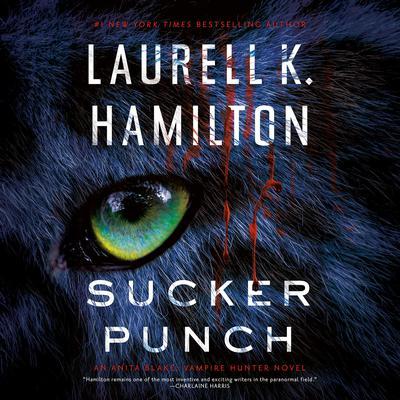 Sucker Punch Audiobook, by