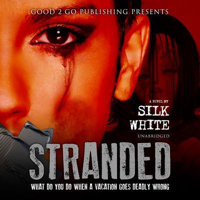 Stranded: A Novel Audiobook, by Silk White