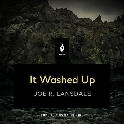 It Washed Up: A Short Horror Story Audiobook, by Joe R. Lansdale
