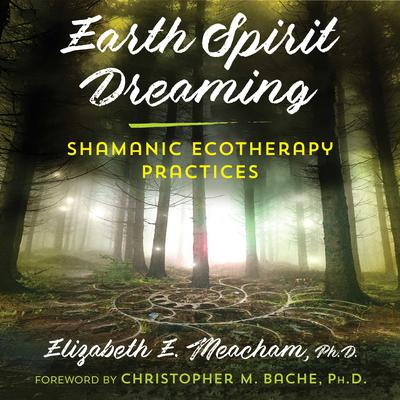 Earth Spirit Dreaming: Shamanic Ecotherapy Practices Audiobook, by Elizabeth E. Meacham