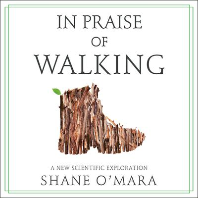 In Praise of Walking: A New Scientific Exploration Audiobook, by