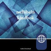 nuBibeln, Audio Download