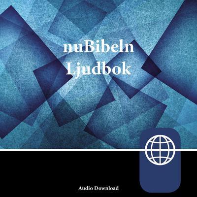 nuBibeln, Audio Download Audiobook, by Zondervan