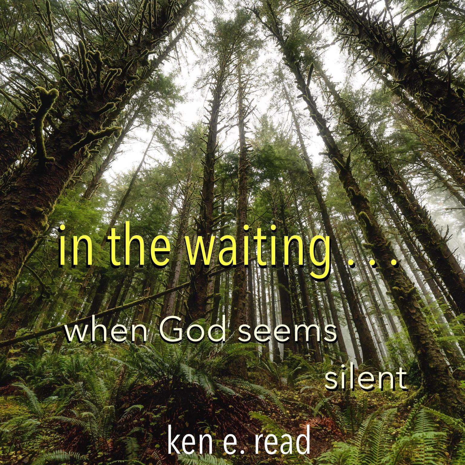 Printable in the waiting . . . : when God seems silent Audiobook Cover Art