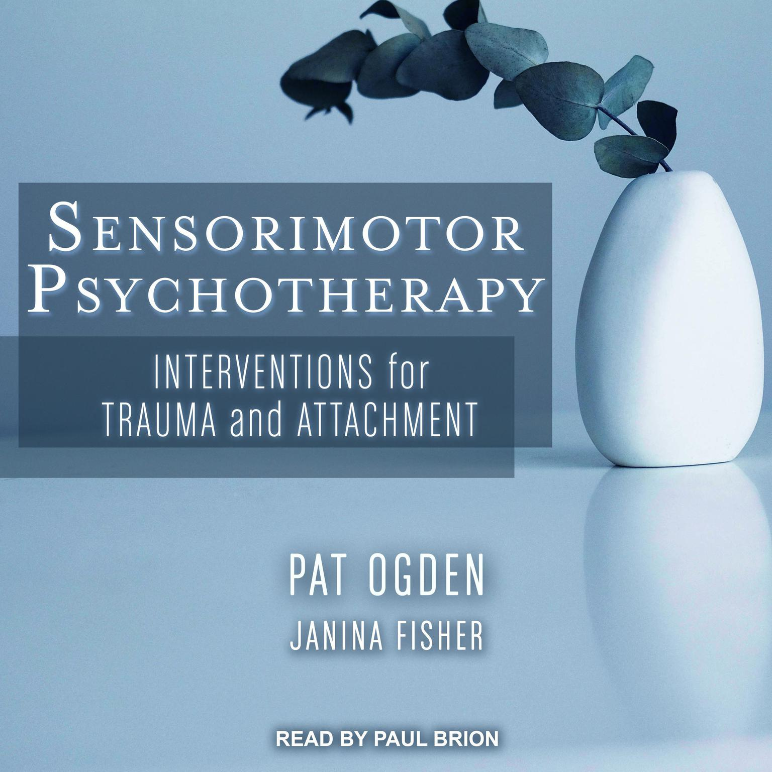 Sensorimotor Psychotherapy: Interventions for Trauma and Attachment Audiobook, by Pat Ogden