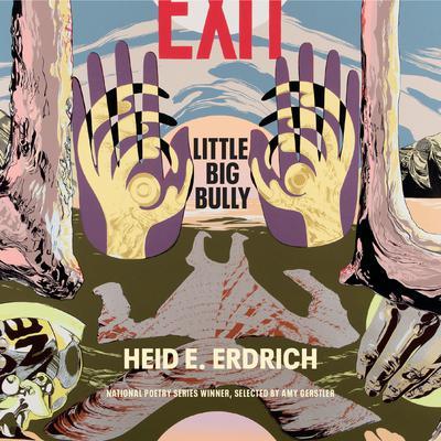 Little Big Bully Audiobook, by Heid E. Erdrich