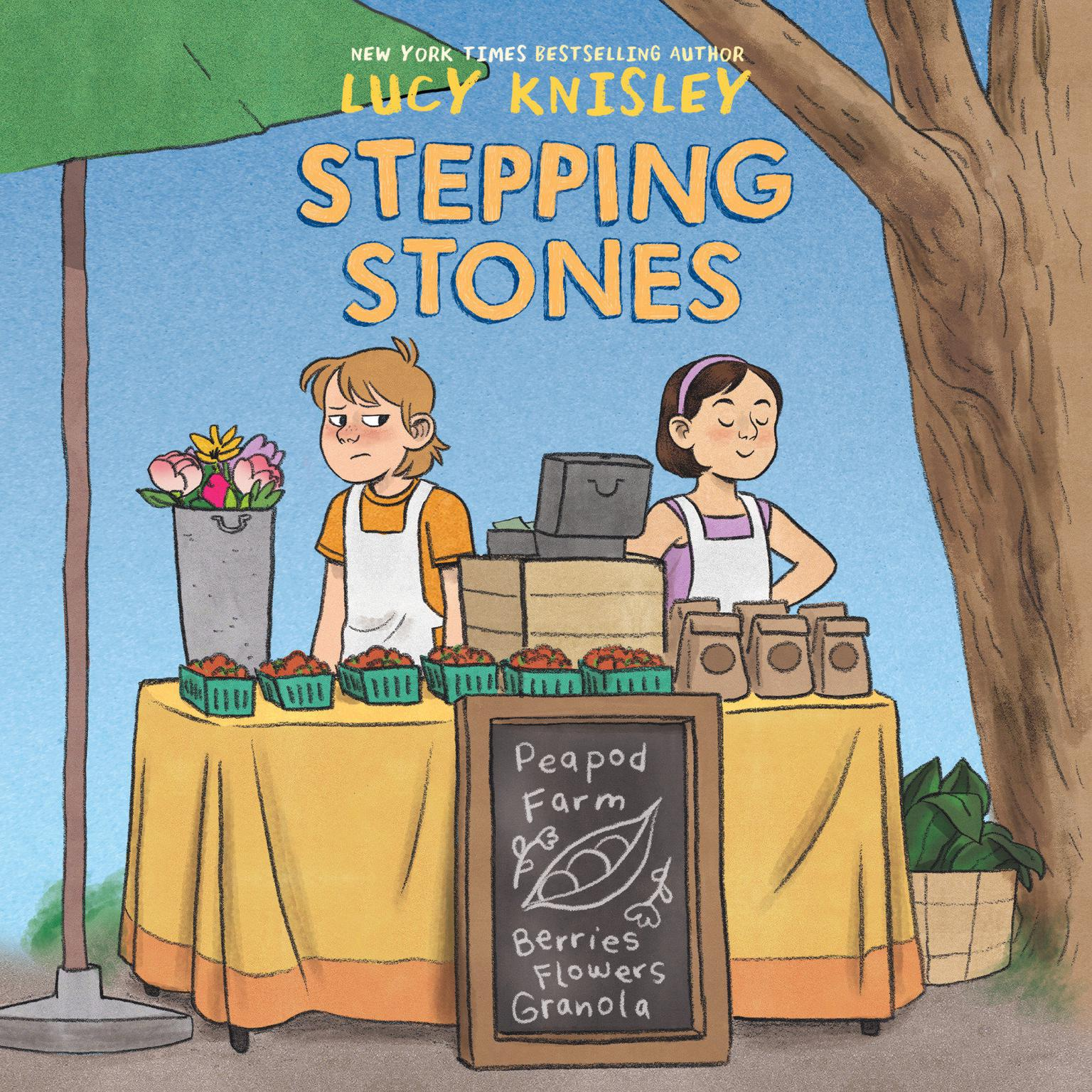 Stepping Stones Audiobook, by Lucy Knisley