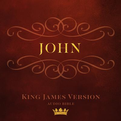 Book of John: King James Version Audio Bible Audiobook, by Made for Success