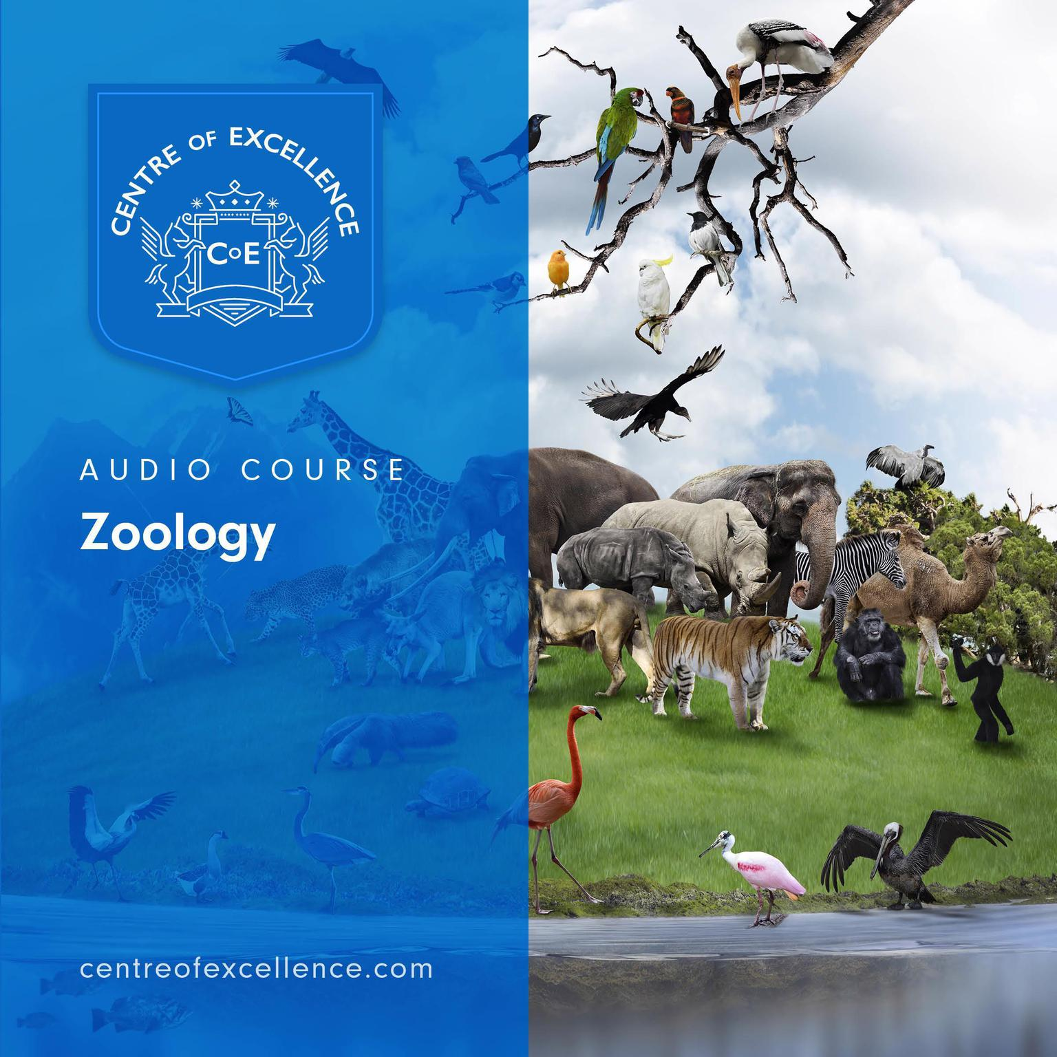 Printable Zoology Audio Course Audiobook Cover Art