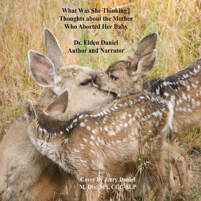 What Was She Thinking Audiobook, by Elden Daniel