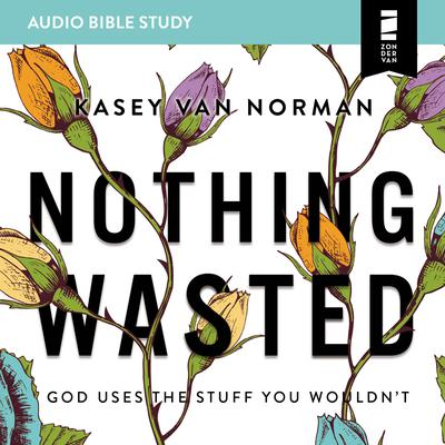 Nothing Wasted: Audio Bible Studies: God Uses the Stuff You Wouldn't Audiobook, by Kasey Van Norman