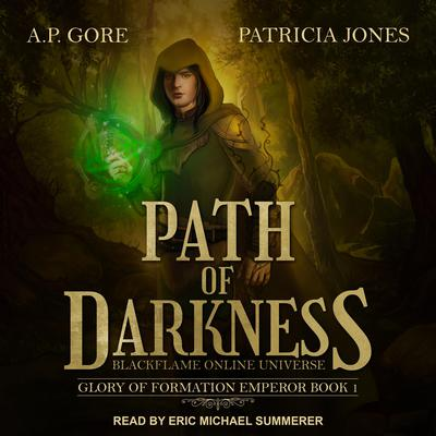 Path of Darkness: BlackFlame Online Universe Audiobook, by A.P. Gore