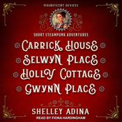 Carrick House, Selwyn Place, Holly Cottage, & Gwynn Place