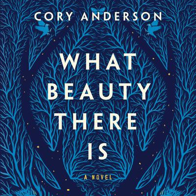 What Beauty There Is: A Novel Audiobook, by Cory Anderson