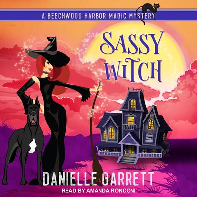 Sassy Witch Audiobook, by