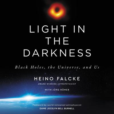 Light in the Darkness: Black Holes, the Universe, and Us Audiobook, by Heino Falcke
