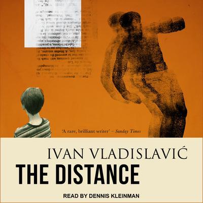 The Distance Audiobook, by Ivan Vladislavic