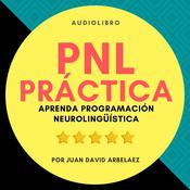 PNL Práctica
