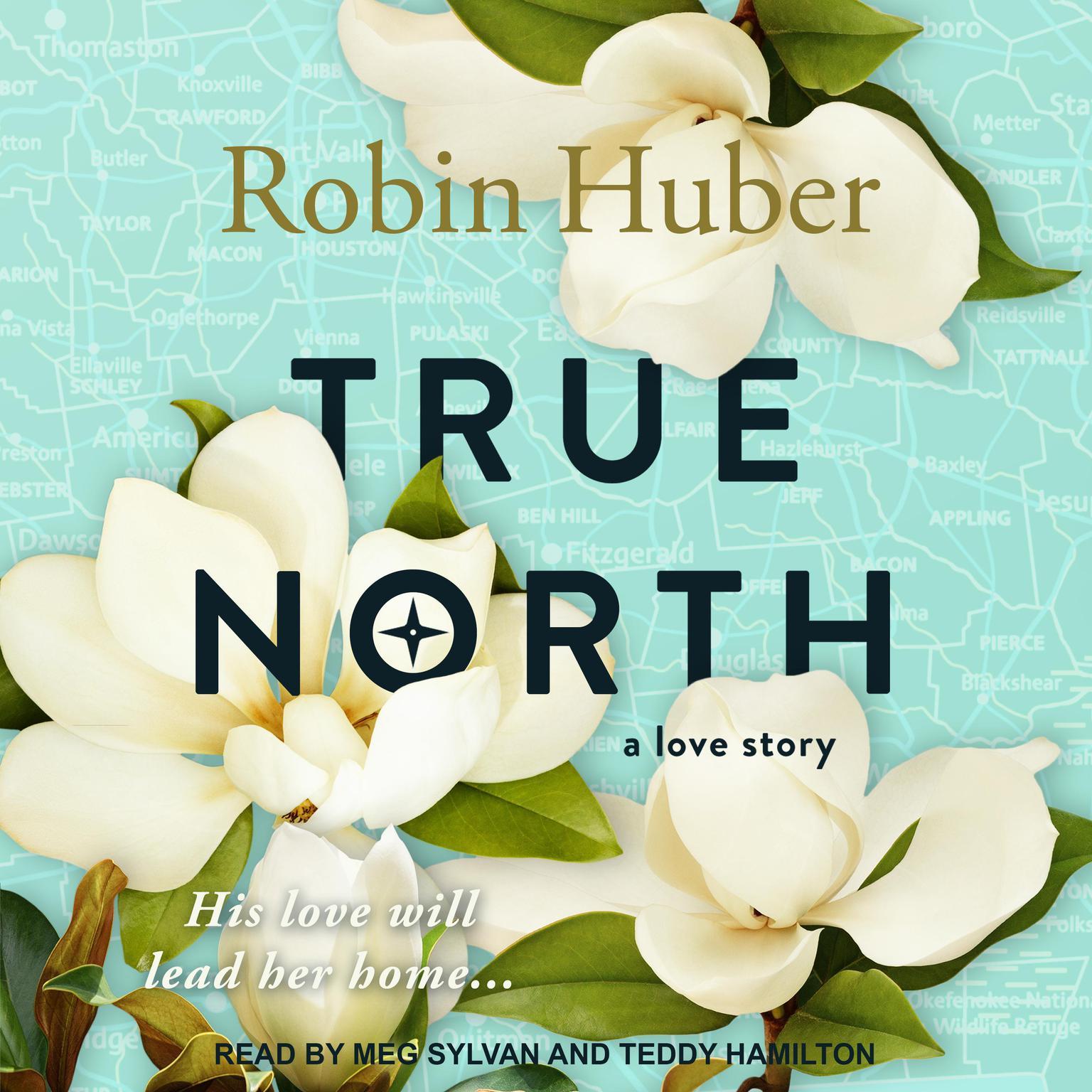 True North Audiobook, by Robin Huber