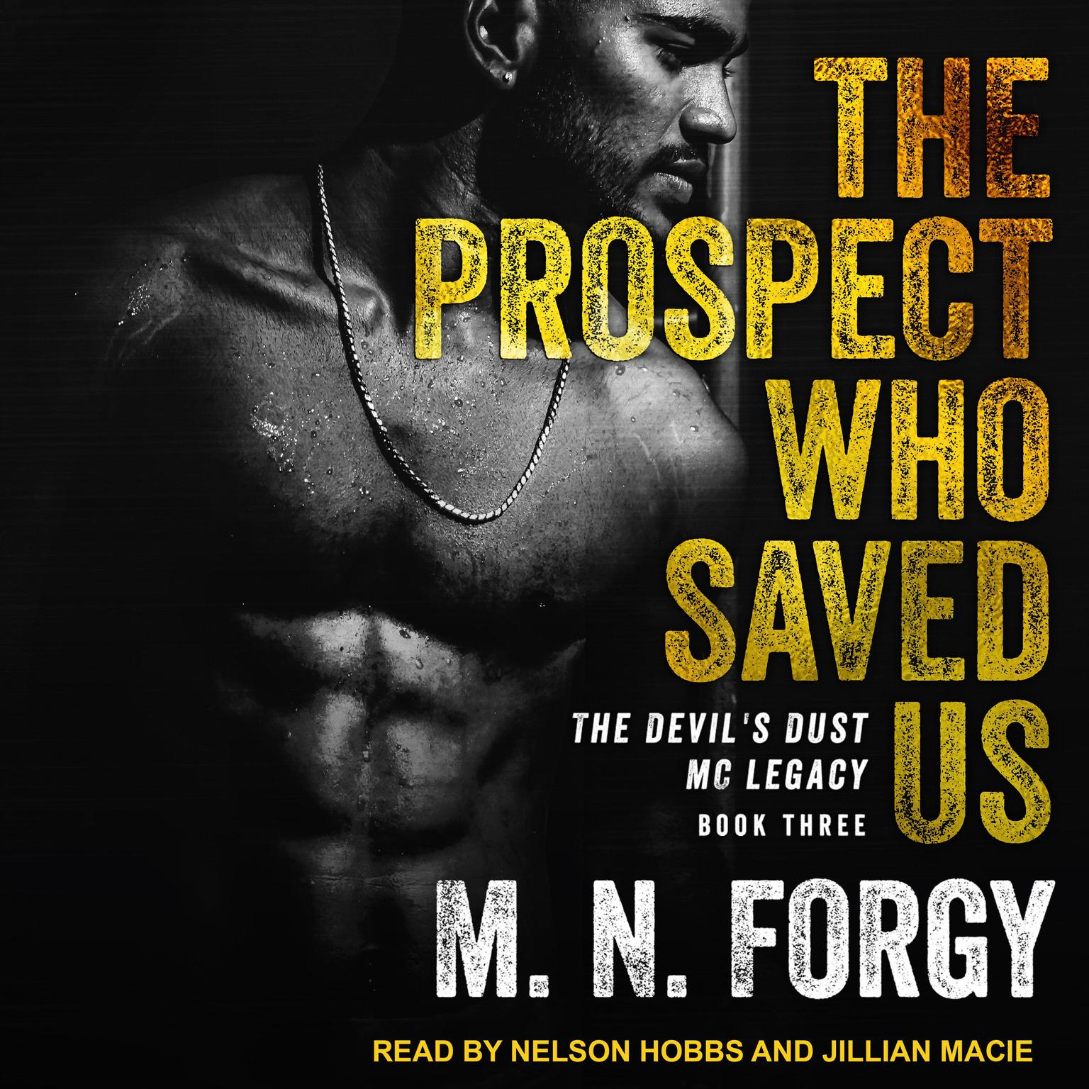 The Prospect Who Saved Us Audiobook, by M. N. Forgy