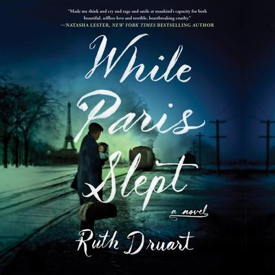 While Paris Slept Audiobook, by