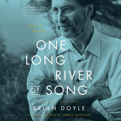 One Long River of Song: Notes on Wonder Audiobook, by