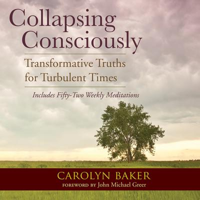 Collapsing Consciously: Transformative Truths for Turbulent Times Audiobook, by Carolyn Baker