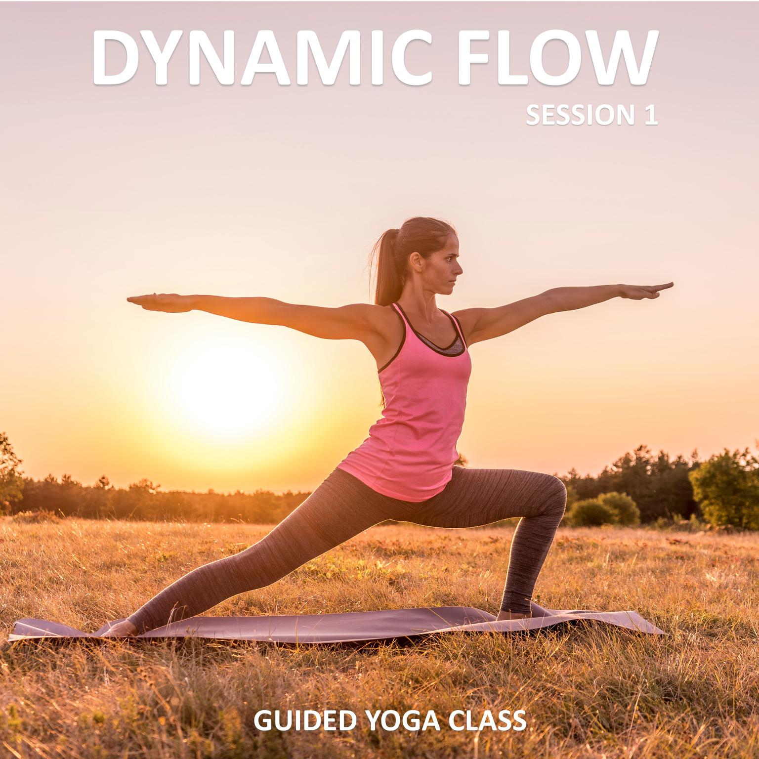 Dynamic Flow Session 1 Audiobook Listen Instantly