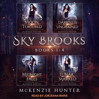Sky Brooks: Books 1-4 Box Set Audiobook, by McKenzie Hunter
