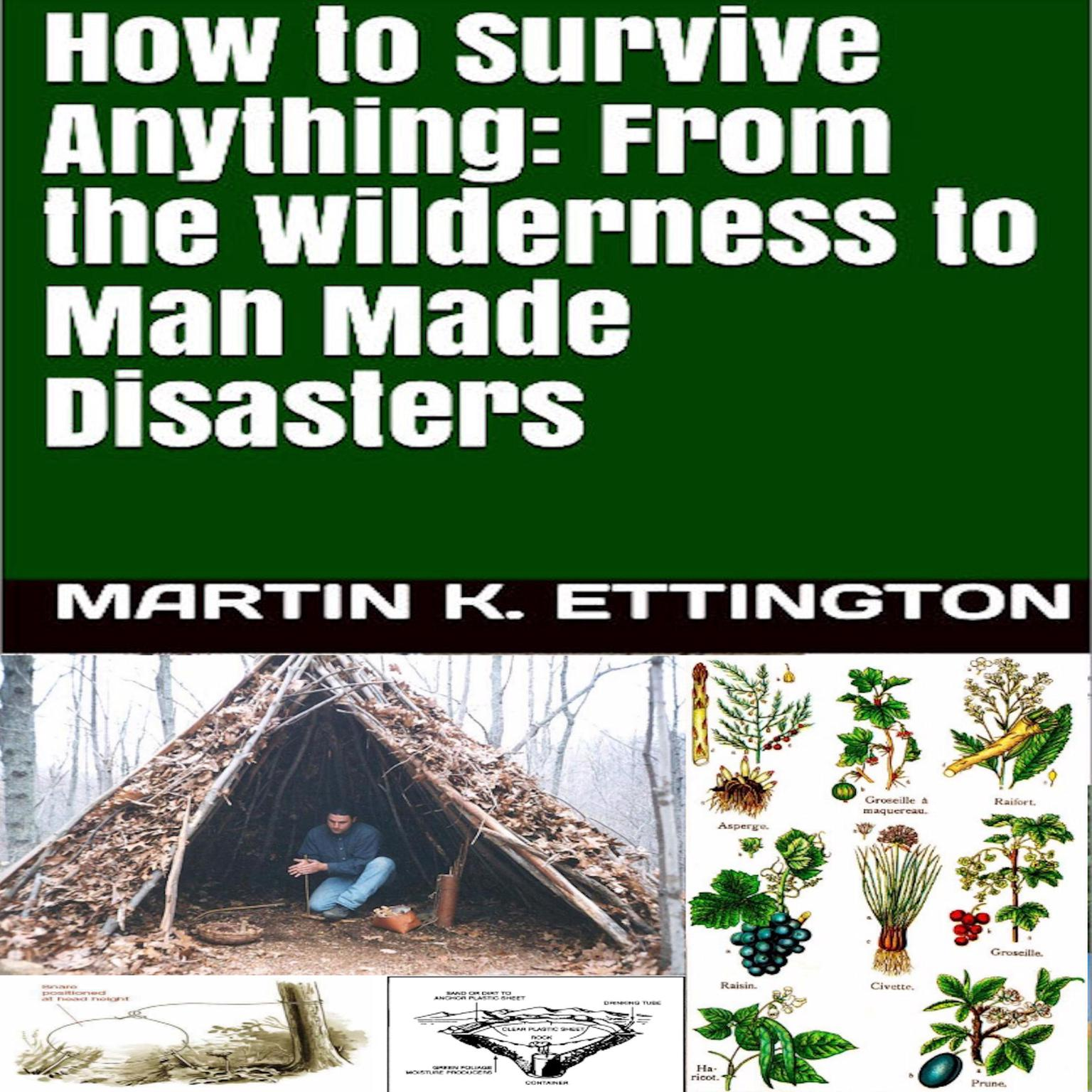 How to Survive Anything: From the Wilderness to Man Made Disasters Audiobook, by Martin K. Ettington
