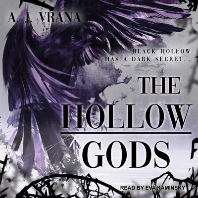 The Hollow Gods Audiobook, by A.J. Vrana